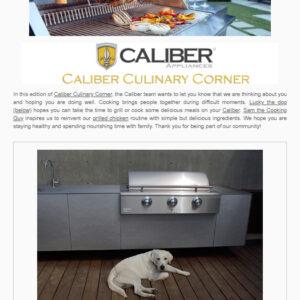CaliberMarch2020ENews1